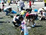 野島海岸での清掃活動