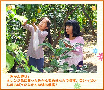 岡村小キッズ 写真